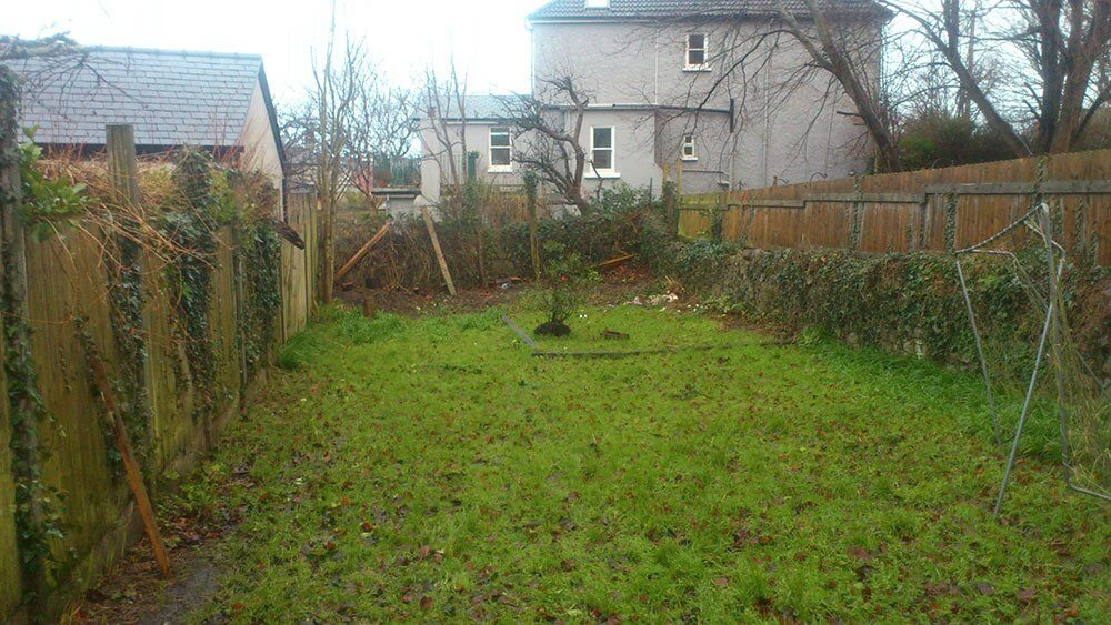 Lawn Before Artificial Grass